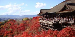 京都エリア.jpg